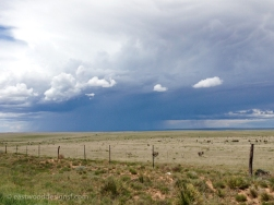 Rangeland—near Corona, New Mexico